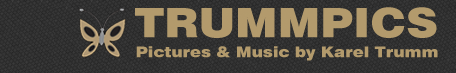 trummpics