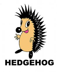 08 - HEDGEHOG TOY SHOP